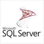 TechnoVista works with Microsoft SQL Server