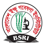 Bangladesh Sugarcane Research Institute (BSRI)